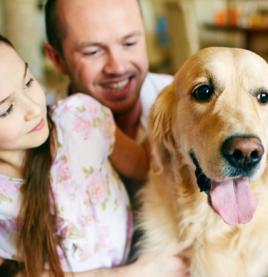 Tener una mascota en casa