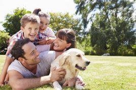 Tips de convivencia entre mascotas y niños
